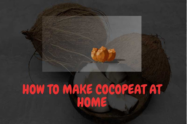 How-to-make-cocopeat-at-home