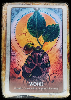 Secret Language of Animals - Wood card