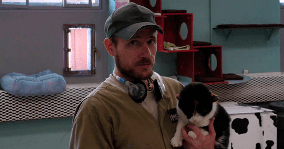 Prison In Indiana Allows Inmates To Take Care Of Shelter Cats