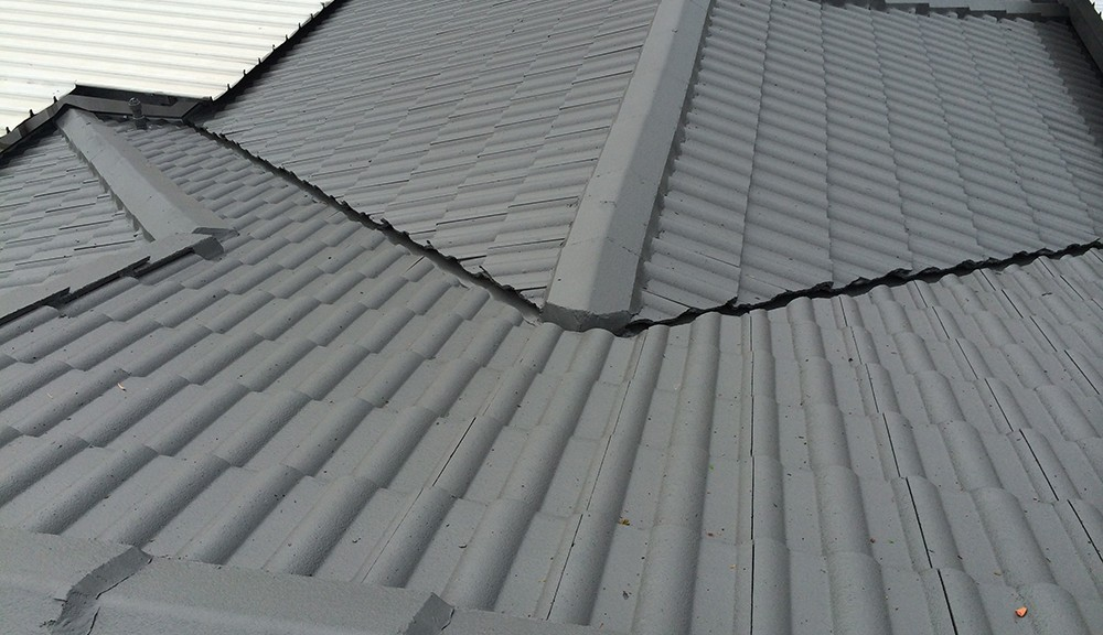 Newcastle roof painting experts