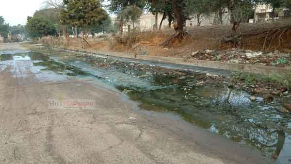 श्रीमाधोपुर में स्वच्छता की वास्तविक स्थिति