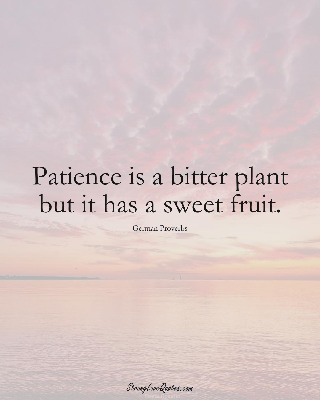 Patience is a bitter plant but it has a sweet fruit. (German Sayings);  #EuropeanSayings
