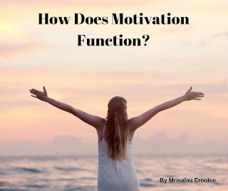 How Does Motivation Function?