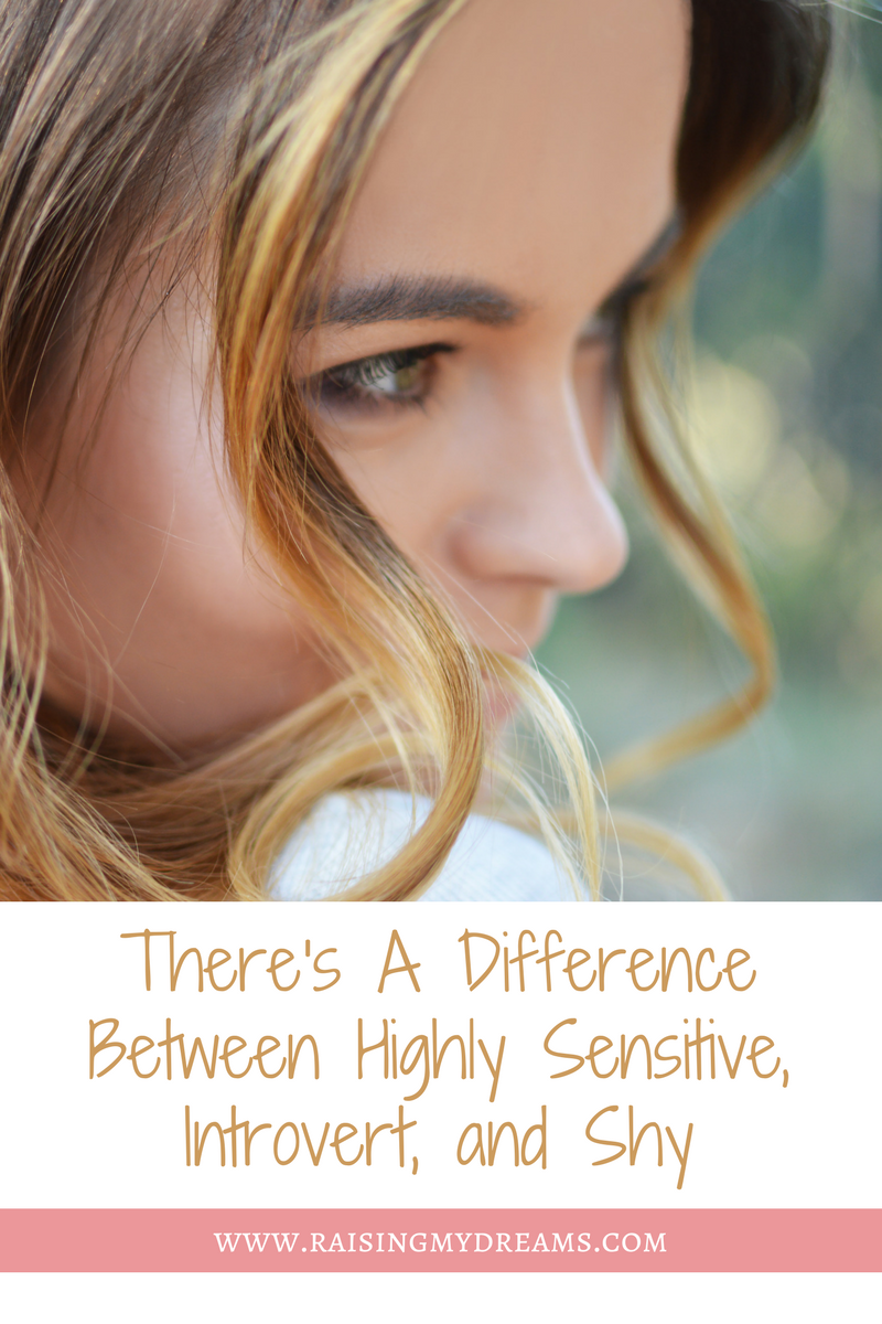 In This Blog I Talk A Lot About Being An Introvert But Also Highly Sensitive And Shy There Is Difference Between Each Of These Traits Though