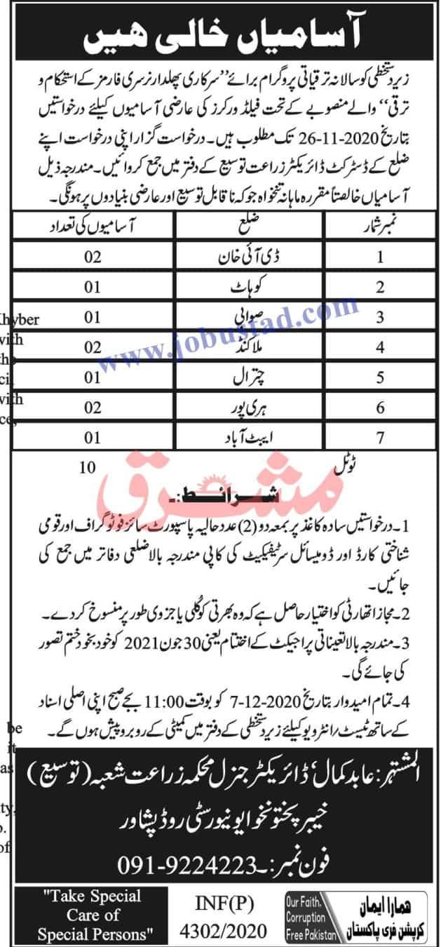 Jobs in Agriculture Department KPK Nov 2020