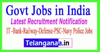 Government Job Vacancies Government Vacancies