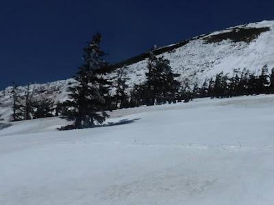 大岳南斜面に広がっているデブリ