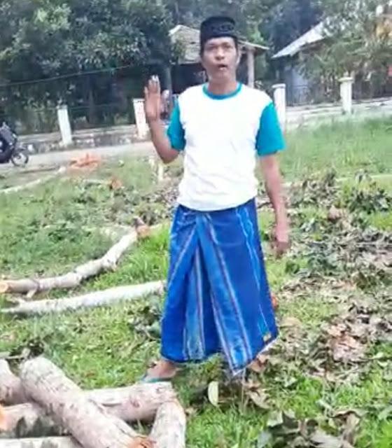 Gegara Pohon Mahoni, Bupati Diminta Ganti Camat Sinjai Selatan