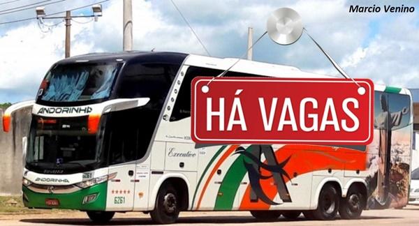 transportes Andorinha