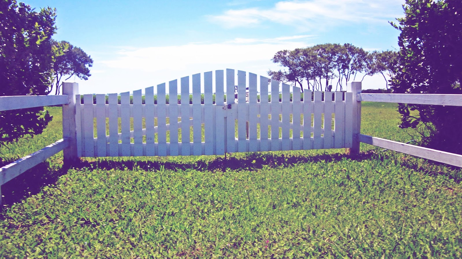 White picket fence backyard in Florida overlooking the ocean with trees