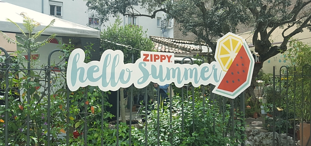 zippy-hello-summer