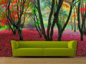 Room Painting Ideas for living room