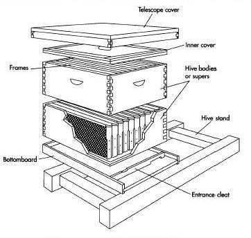 rumah lebah sederhana terbaik