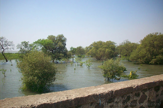 Eco tourism in India - Elephanta Caves - water bodies
