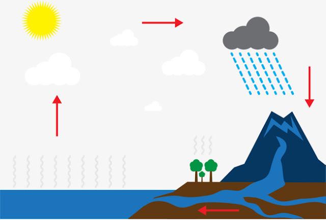 دورة الماء في العالم