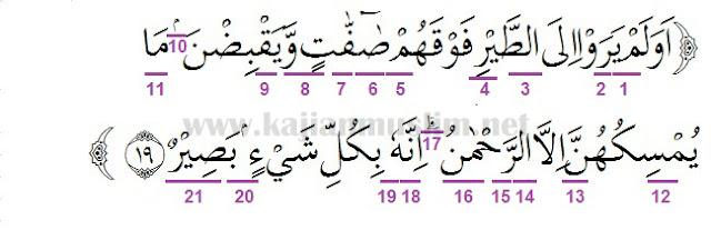 Hukum Tajwid Surat Al-Mulk Ayat 19