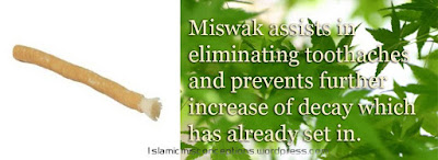miswak Health Benefits, Uses & Cures in Holy Qur'an & Ahadith