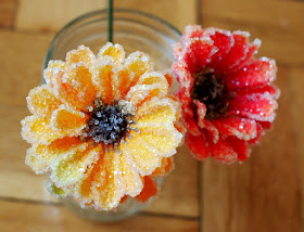how to grow crystal flowers