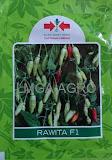 cara menanam cabe di rumah, manfaat cabe, cabe rawit, jual benih cabe hibrida, toko pertanian, toko online, lmga agro