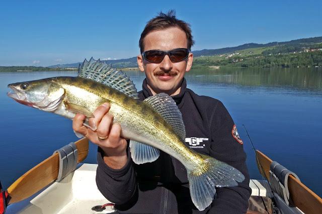 czorsztyn-zander-fishing