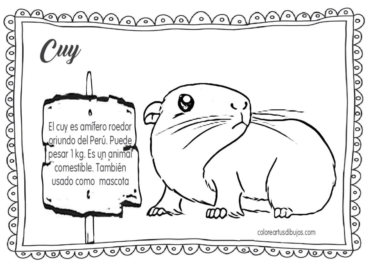 Colorear Tus Dibujos Peru Sierra Animales Dibujos Para Ninos