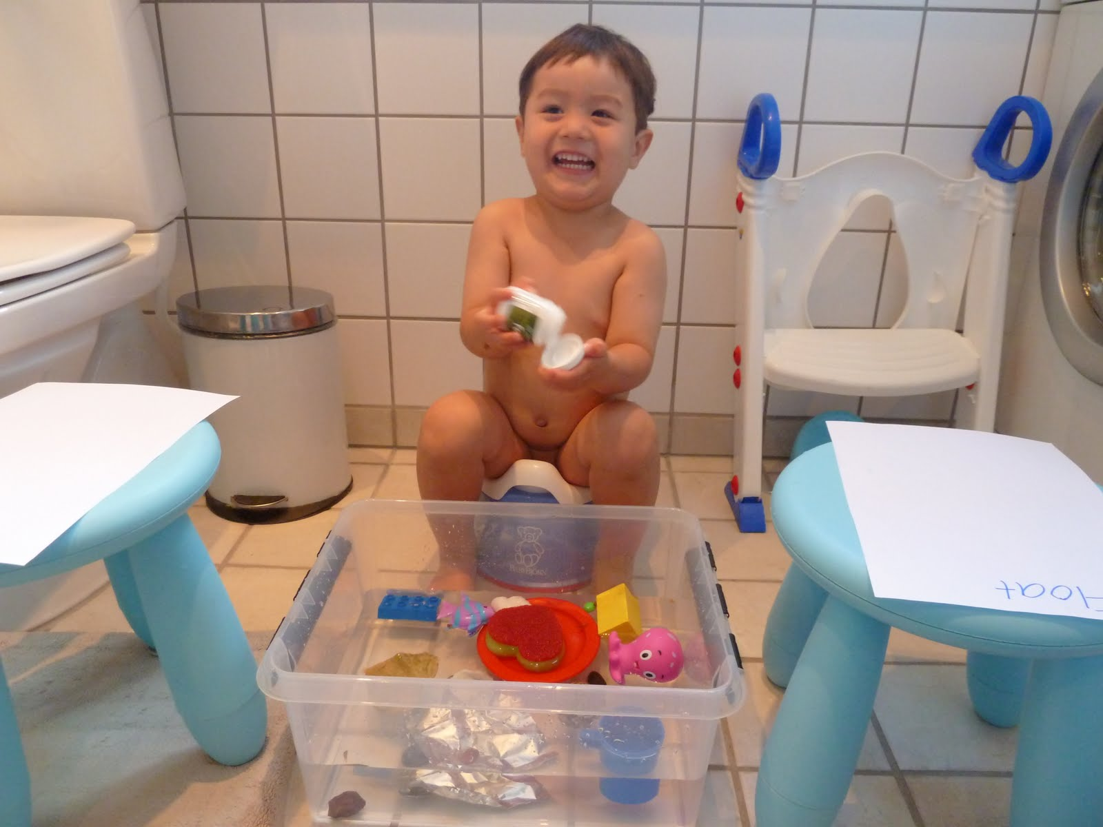 Family Fecs Montessori Activity Floating Amp Sinking