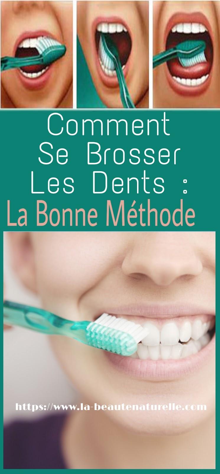 Comment Se Brosser Les Dents : La Bonne Méthode