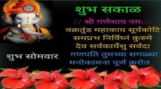 Ganesh jayanti Shebhechya