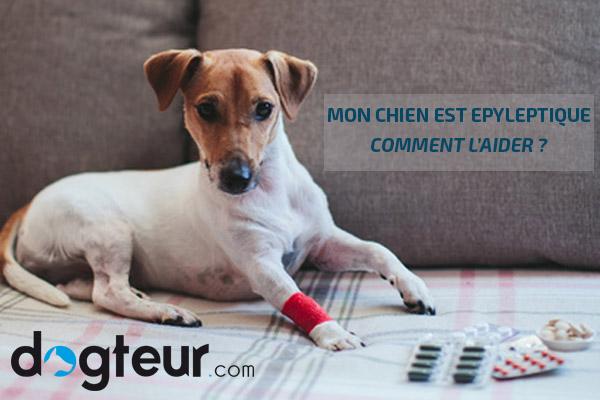 LFI : La France insoumise se lance - Page 5 Header-epilepsie