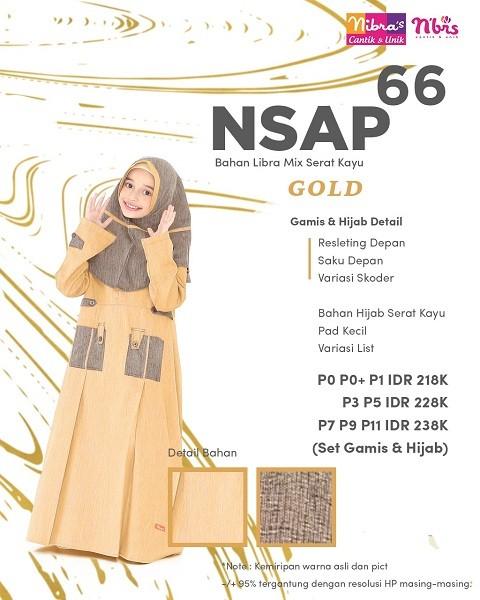 Nibra's NSAP 66
