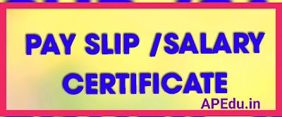 PAY SLIP /SALARY CERTIFICATE