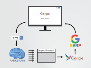 Understanding Brain Rank and Its Application in SEO Blog