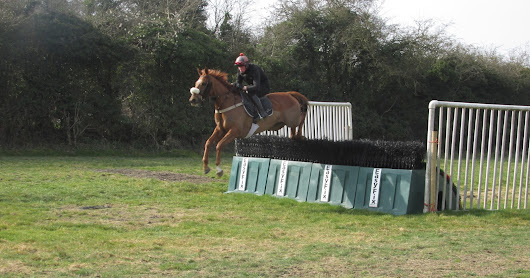 Point to point racing - the begining of National Hunt racehorse career