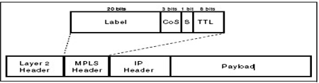 Gambar 5. Header MPLS