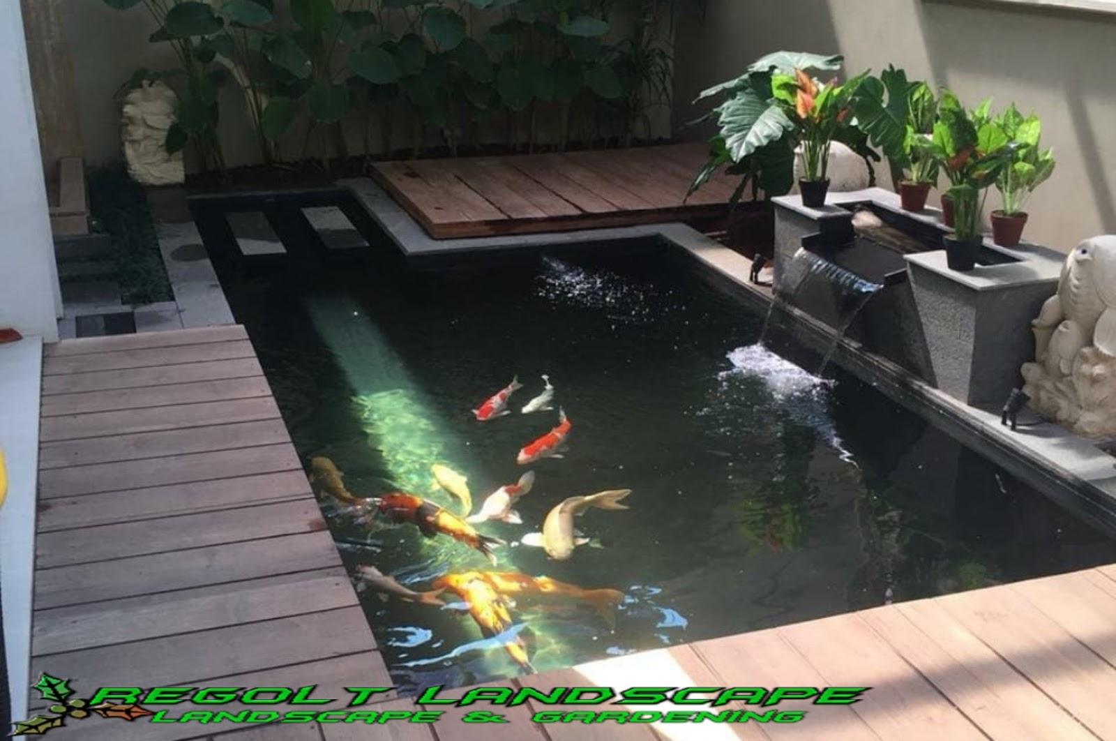 Jasa Pembuatan Kolam Ikan Koi Minimalis Di Tangerang