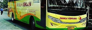 Harga Tiket Bus Pahala Kencana Terbaru sampai Agustus 2016