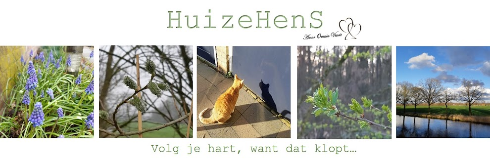 Huize HenS
