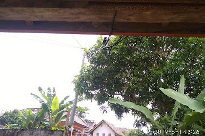 Memindahkan Kabel PLN