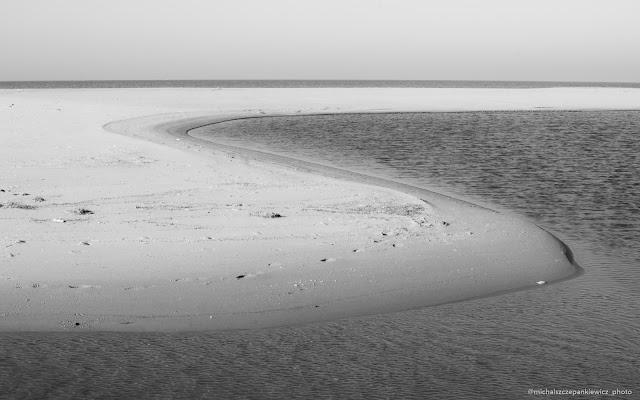 plaża na Wyspie Sobieszewskiej - rezerwat ptaków
