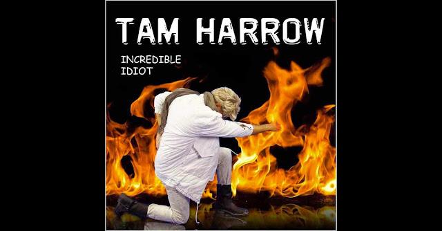 La copertina di ''Incredible Idiot'', ovvero: un nuovo album di Den Harrow nel 2015