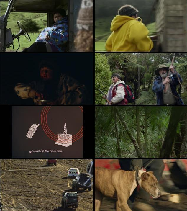 Hunt for the Wilderpeople 2016 English 720p WEB-DL