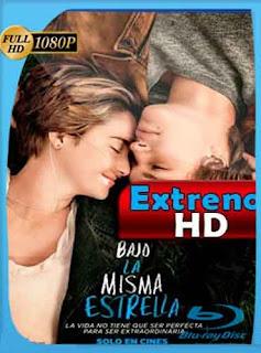 Bajo la misma estrella 2014 HD [1080p] Latino [Mega] dizonHD