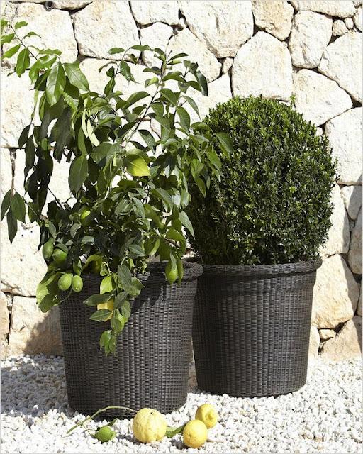 large garden planters for vegetables uk, ireland