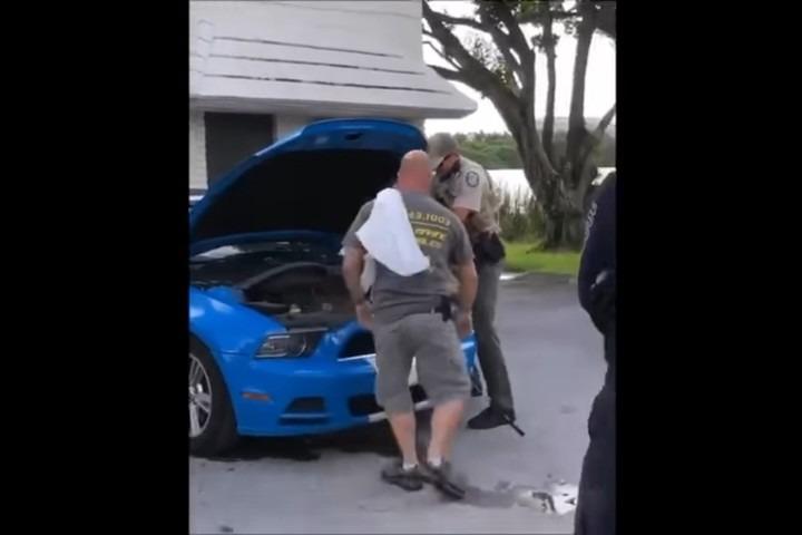 Abrió el capot de su Mustang y encontró una pitón de 3 metros