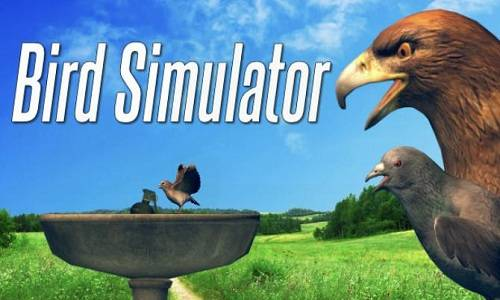 Bird Simulator Game Free Download