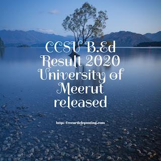 CCSU B.Ed Result 2020