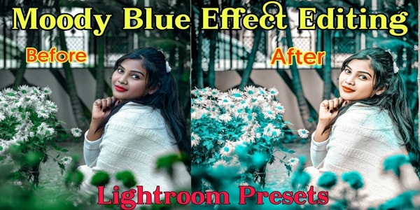 Moody Blue Lightroom Mobile Presets Download 2021 | Best Moody Blue Lightroom Presets