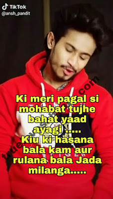 Ansh pandit break-up sad love shayari