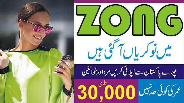 Zong Jobs 2021