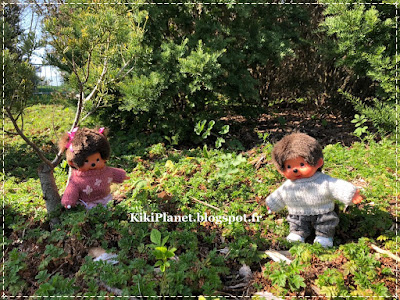 monchhichi, kiki, jardins suspendus, normandie, le havre, parc square